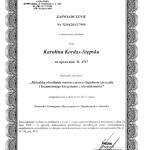 2013.04.04 metodyka okreslania